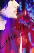 Little Things (Louis Tomlinson y tu) by TrishaAnneBS