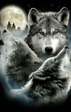 Running With The Wolves. (Rhydian & Jimi X Reader) ((a Wolfblood fanfiction) by fanficjen2005