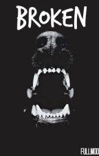Broken ≫ A Teen Wolf Fan Fiction [Book 2] by fullmoonz