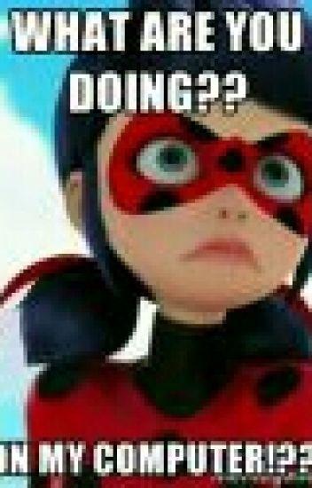 Funny Ladybug Meme : Miraculous ladybug memes bluealpaca wattpad