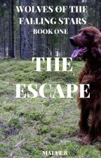 Wolves of the Falling Stars Book 1: The Escape by ad_meliora