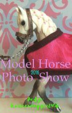 Model Horse Photo Show 2016 {OPEN} by horsecrazygirl425
