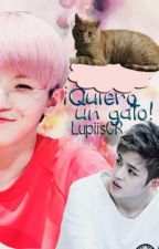 ¡Quiero un Gato! ≫ JiCheol. by -JustAlmi