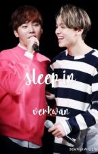 sleep in - a verkwan oneshot by ppeachyyboo