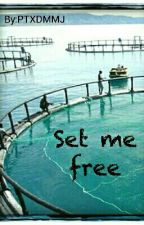 Set me free (Secret ship [...]avi ) by PTXDMMJ