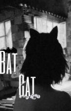 BatCat Texting /DC Comics\ by somehowkryptonian