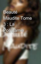 Beauté Maudite Tome 3 : La Polygamie by maremediop1