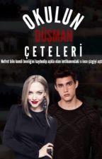 OKULUN DÜŞMAN ÇETELERİ  by luciosilla