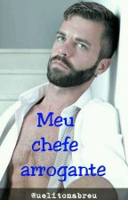 Meu Chefe Arrogante. 1 Temporada by UelitonAbreu