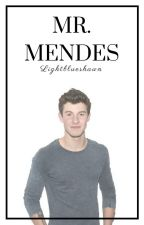 Mr. Mendes - Shawn Mendes by ethansmainhoe