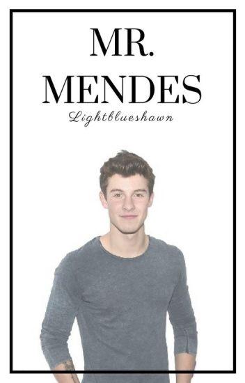 Mr. Mendes    Shawn Mendes