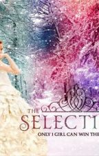 The Selection  Quotes by zoeybk