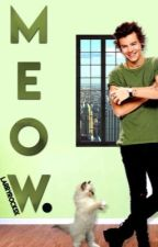 Meow. l.s [tiny kitten Louis] by larryrocksx