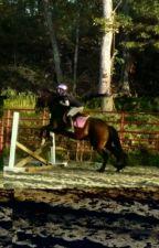 My Equestrian Life by equestriantori