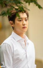 [Fanfic EXO] [Chanyeol x Fangirl] Tôi Hiểu Bạn Hiểu by Bell206602