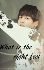 The Right Feel {JUNGKOOK FANFIC} by Hanyoyie