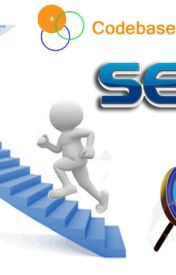 Experience The Best Business Progress Services In India by codebase08