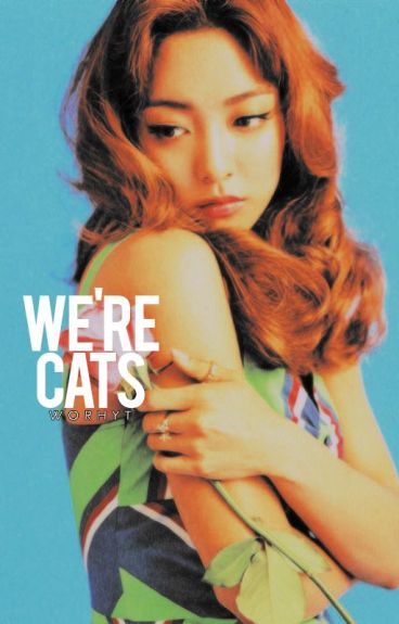 「WE'RE CATS」// VKOOK