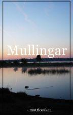 Mullingar. [louis tomlinson] ✔ by matrioszkaa_