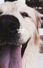 CASUAL AFFAIR | ALEX KAREV 1 by -fitzgeralds