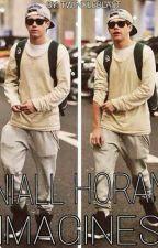 Niall Horan Imagines (ON HOLD)  by xtwinkleblastx