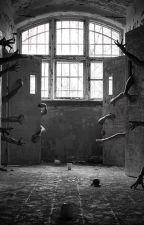 ◾[◾[Break My Freedom] ◾] ◾Creepypasta X Asylum Reader by Creepywriter999