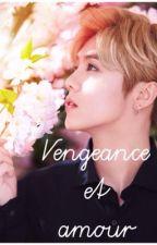 Vengeance et amour ✞ ||  HanHun/HunHan by Alexh_d31
