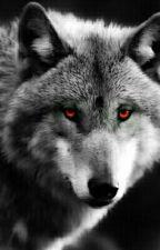 Lone Wolf: Un Lupo Solitario by _lavitanonhasenso_