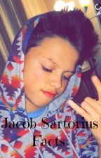 Jacob Sartorius Facts by WriterMagcon