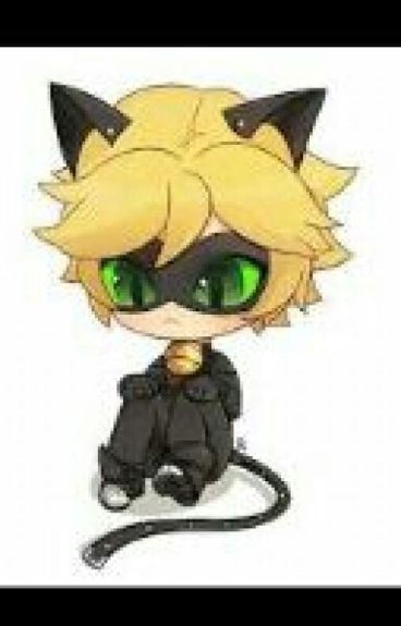 Who Are You ? Cat Noir x Reader