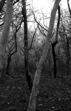 The Ghost  by SieSie2016