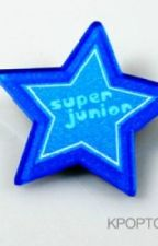 Super Junior's Sister by Kim_Roster