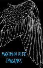 Maximum Ride Imagines by kendering