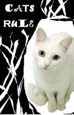 Cats Rule by Senna-X3