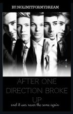 After One Direction broke up. by nolimitformydream