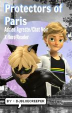 ⟦ Protectors of Paris - Adrien Agreste/Chat Noir X Hero!Reader ⟧ *ON HOLD* by djbluecreeper