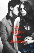 The C.E.O.'s New Secretary by bella4858