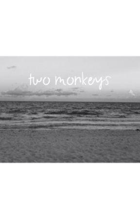 Two monkeys by ierrecute