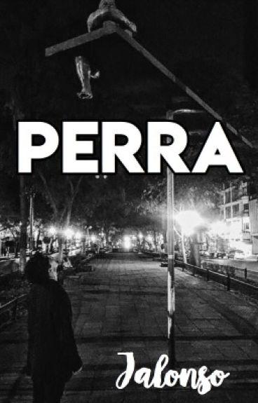 Perra J.V  (Terminada)