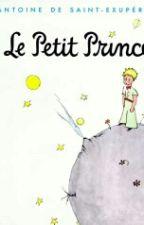 Le Petit Prince by Les4saisons