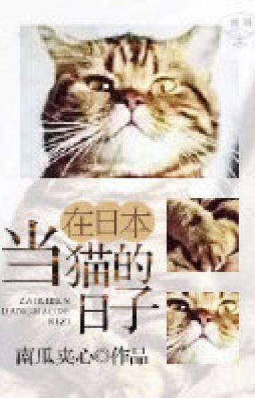 Những ngày làm mèo ở Nhật Bản - Nam Qua Giáp Tâm