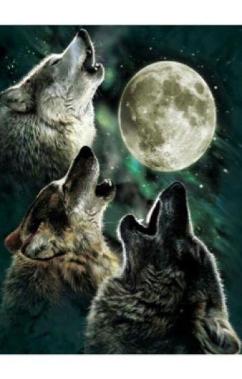 Alla luce della luna piena