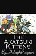 Akatsuki Kittens (Deidara Love Story) by HaleighPenguin