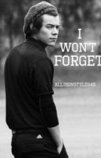 I Won't Forget by allisonstyles45