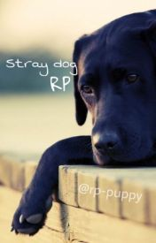 Individual stray dog rp by rp-puppy