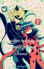 miraculous ladybug and cat noir by ipekgnsever