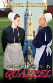 An Amish Country Quarrel by hillhangcaseg