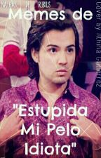 """Memes de """"Estupida Mi Pelo Idiota"""" by SoyLaPapadaDeRubius"""