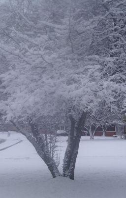 Snow (Poem)