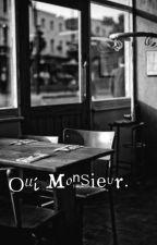 OUI, MONSIEUR. l.s by haurra